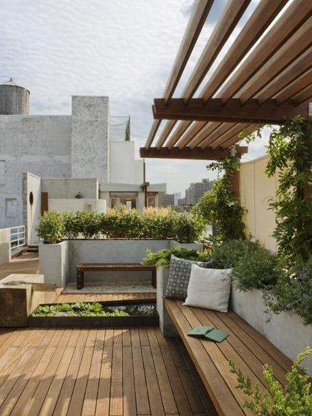 Сад на крыше: уголок природы в шумном городе