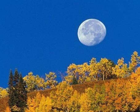 Что такое лунный календарь и для чего он нужен